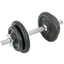 Гантель разборная Fitnessport GS-10 10 кг стальная