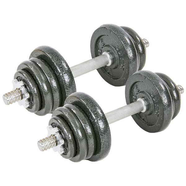 Гантели разборные Fitnessport GS-25 25 кг стальные