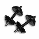Гантели наборные 2шт х 15,5кг (31 кг) Ручка каучук Fitnessport DB-01-31kg