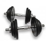 Гантели наборные 2шт х 10,5кг (21 кг) Ручка хром Fitnessport DB-02-21kg