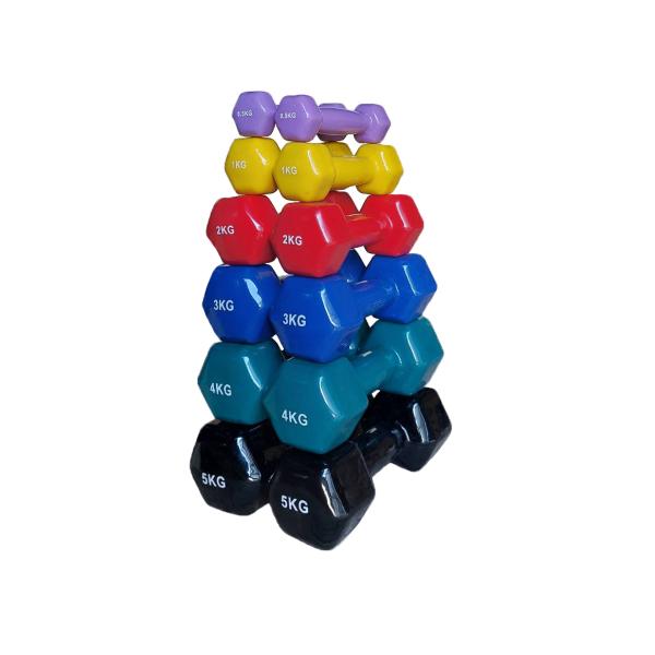 Набор виниловых гантелей VDD-01 0.5-5 кг