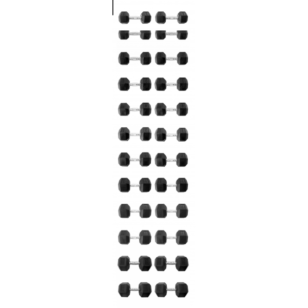 Гантельный ряд 10-40кг 13 пар Explode PD-108-10-40