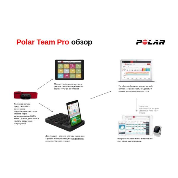 Система командная POLAR TEAM PRO + лицензия на 1 год