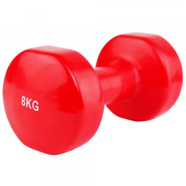 Гантель виниловая Stein LKDB-504A-8 кг
