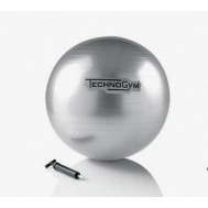 Мяч 55 см Technogym Wellness Ball Home cm.55 GREY A0000154AA