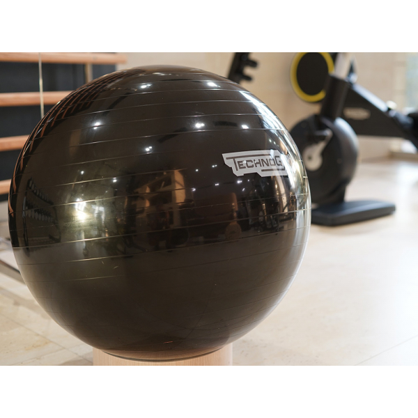 Мяч 65 см Technogym Wellness Ball Home cm.65 BLACK A0000155AA