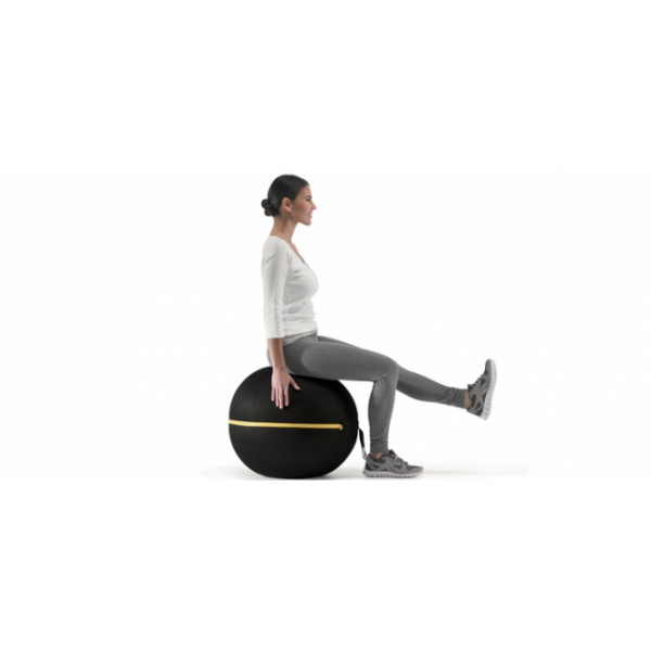 Мяч Wellness Ball 55 см. Technogym Wellness Ball active sitting 55 cm A0000639-BLK