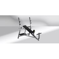 Скамья для жима от груди под углом Technogym Inclined Bench PA01