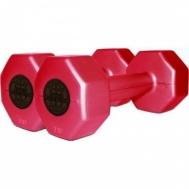 Гантели пластик цветные 2 кг Inter Atletika ST560.2-2